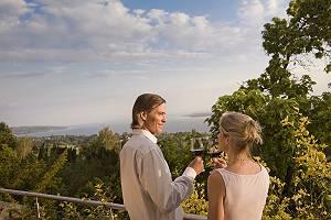 Paar stößt mit Weingläsern am Bodensee an