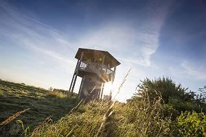 Aussichtsturm aus Holz für Naturbeobachtungen im Donaumoos in d