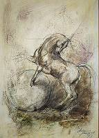 Zeichnung eines Pferdes