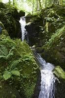 Kleiner Wasserfall eines Bachs
