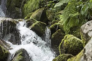 Wildbach bahnt sich Weg durch Gestein