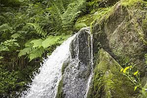 pictol-2097-wildbach-bahnt-sich-weg-durch-gestein