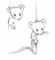 Bleistiftzeichnung zweier Mäuse