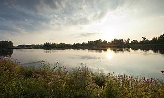 Donau vom Ufer aus bei Abendsonne