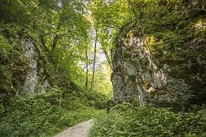 Wanderweg im Wolfstal auf der Schwäbischen Alb