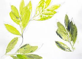 Abdrücke von Blättern