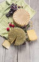 Zwei Käseräder und herausgeschnittene Käsestücke, dekoriert