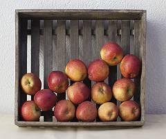 Frische Äpfel in einer Holzkiste