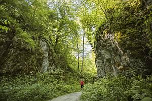 Ein Mann wandert durch das Wolfstal auf der Schwäbischen Alb