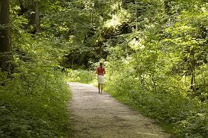 Eine Frau macht einen Spaziergang durch das Wolfstal
