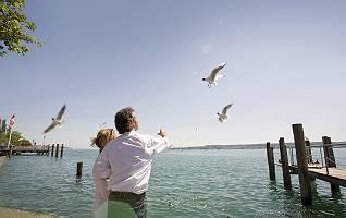 Paar füttert die Möwen am Bodensee
