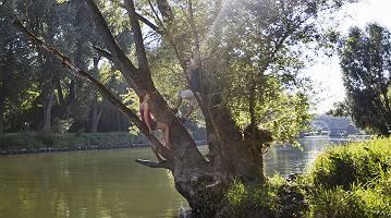Junges Paar entspannt auf altem Baum an der Donau