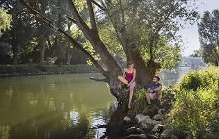 Paar entspannt an einem Baum am Donauufer in Regensburg