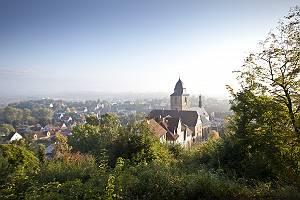 Über den Dächern von Naumburg