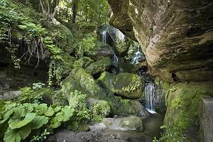 Wasserfall in der Kirnitzschklamm