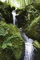 Wasserfall im Kirnitzschtal