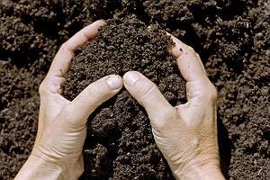 Hände halten umweltbewusst wertvolle Erde
