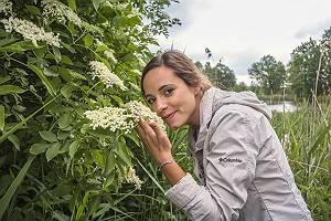 Junge Frau riecht an Holunderblüte