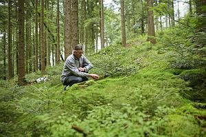 Naturerkundung im Fichtenwald
