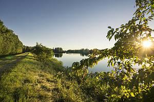 Donau bei Blindheim in der Abendsonne
