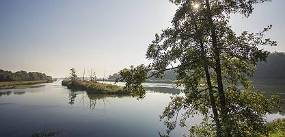 Donau bei Erlingshofen