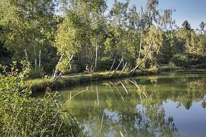 Fahrradtour am Ufer des Aschausees