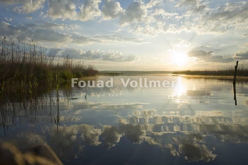 Moorsee im Sonnenaufgang