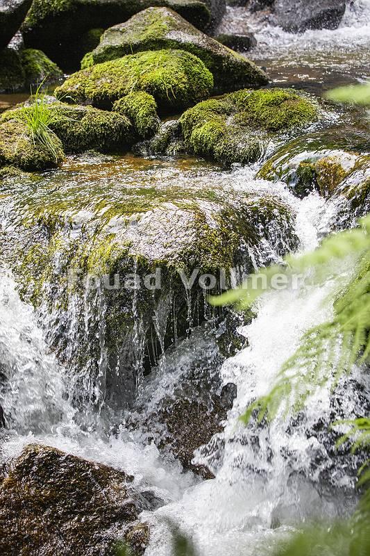 pictol-2099-wildbach-bahnt-sich-weg-durch-gestein
